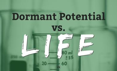 homeschool homeschooling science experiment yeast