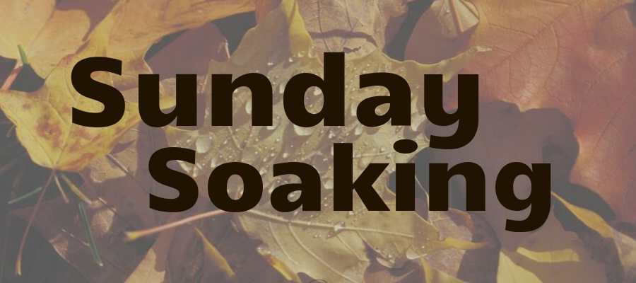 Sunday Soaking: It All Begins with The Word