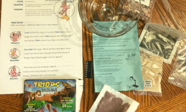 A Reason For Science triops experiment triop
